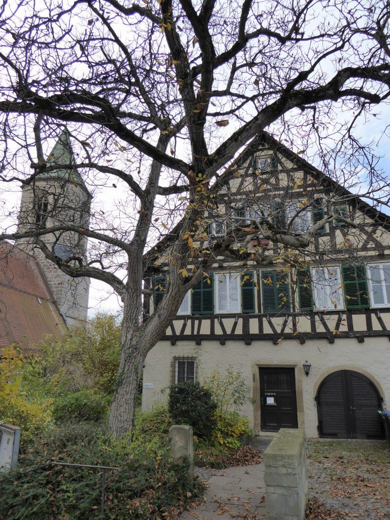 Weinstadt Beutelsbach