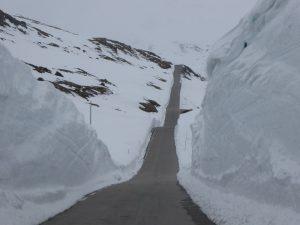 Sognefjellsveien