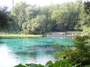 Floridas Countryside